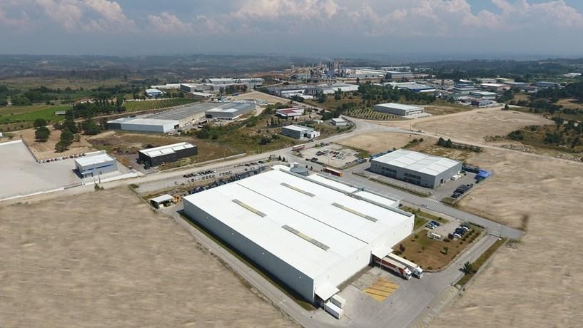 """""""Nelas vai ter uma fábrica de óleo de cannabis"""" – Noticia in Jornal de Negócios"""